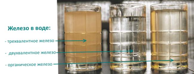 Показаны различные формы железа в воде